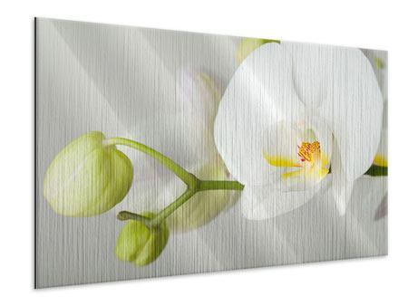 Metallic-Bild Riesenorchidee