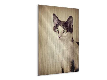 Metallic-Bild Katze