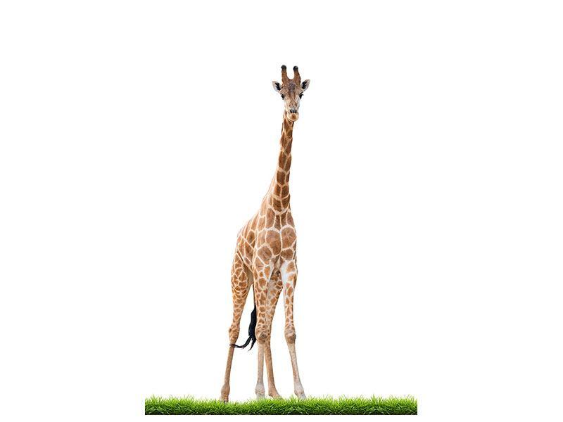 Metallic-Bild Die lange Giraffe