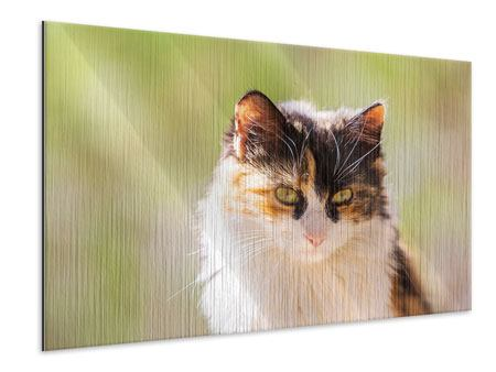 Metallic-Bild Katzenbesuch