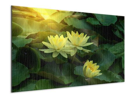 Metallic-Bild Wilde Lotus