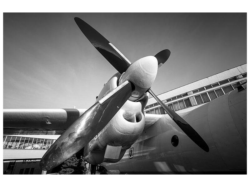 Metallic-Bild Nostalgisches Flugzeug