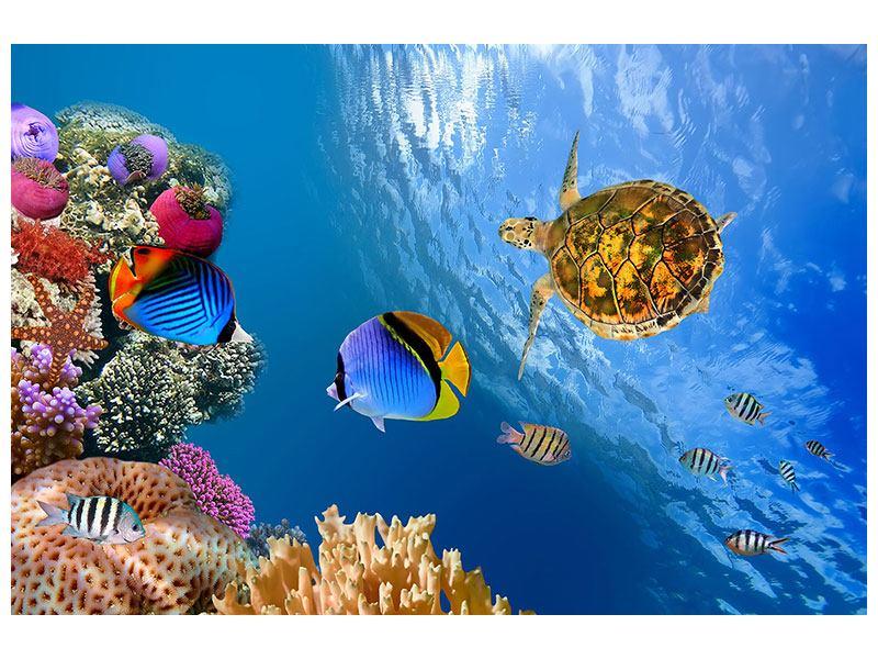 Metallic-Bild Fisch im Wasser