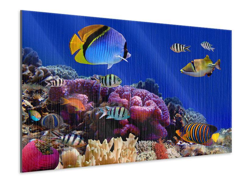 Metallic-Bild Welt der Fische