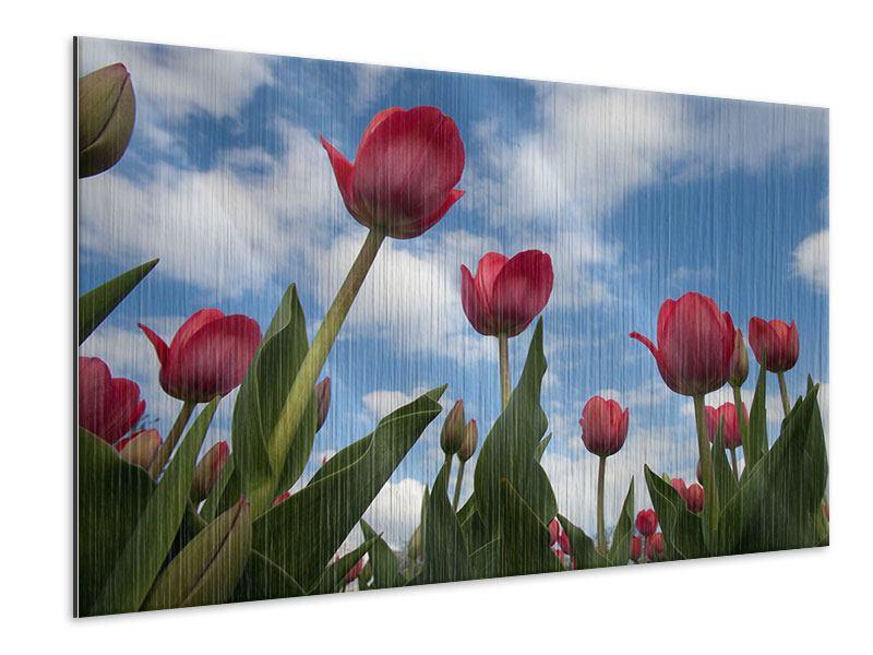 Metallic-Bild Tulpen im Himmel
