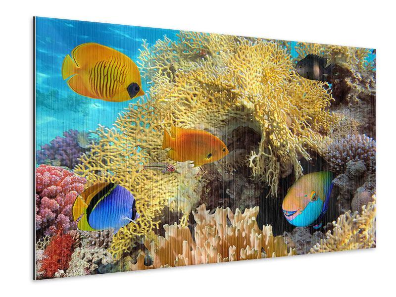 Metallic-Bild Fischreichtum