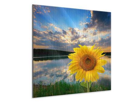Metallic-Bild Sonnenblume am See