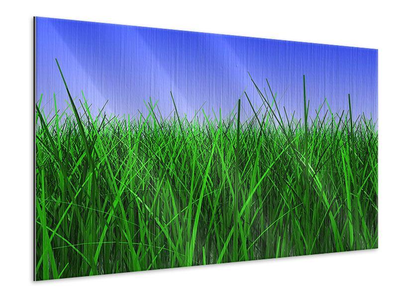 Metallic-Bild Im Gras