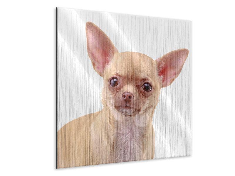 Metallic-Bild Chihuahua