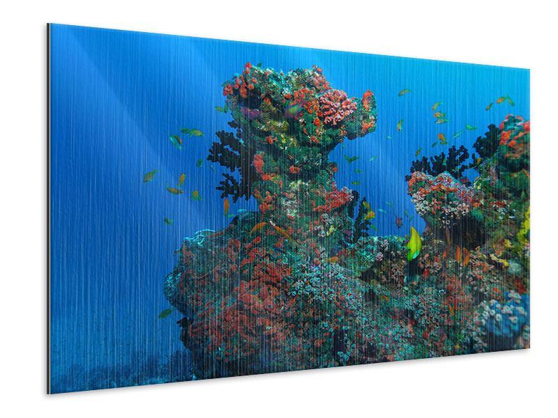 Metallic-Bild Die Welt der Fische