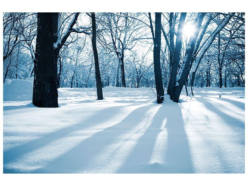 Metallic-Bild Der Wald ohne Spuren im Schnee