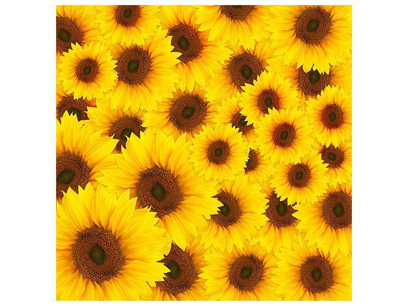 Metallic-Bild Ein Strauss Sonnenblumen