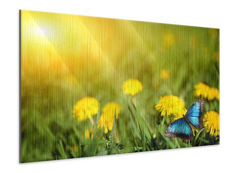 Metallic-Bild Der Löwenzahn und der Schmetterling