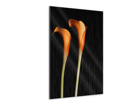 Metallic Bild Goldige Calla