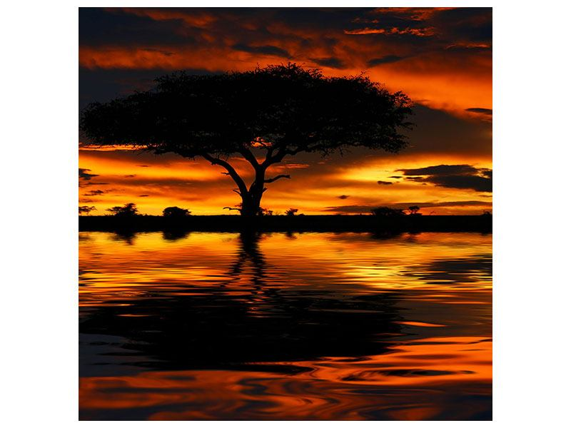 Metallic-Bild Sonnenuntergang in Kenia