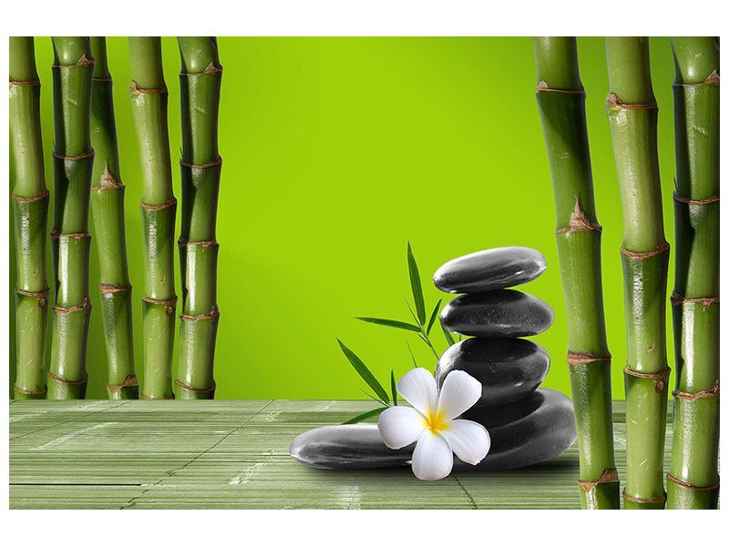 Metallic-Bild Der Bambus