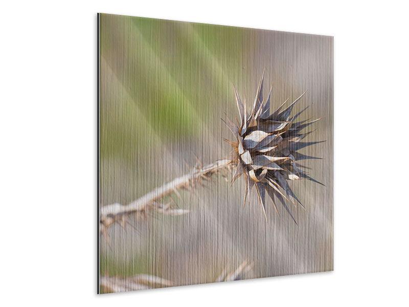 Metallic-Bild Die Wüstenblume