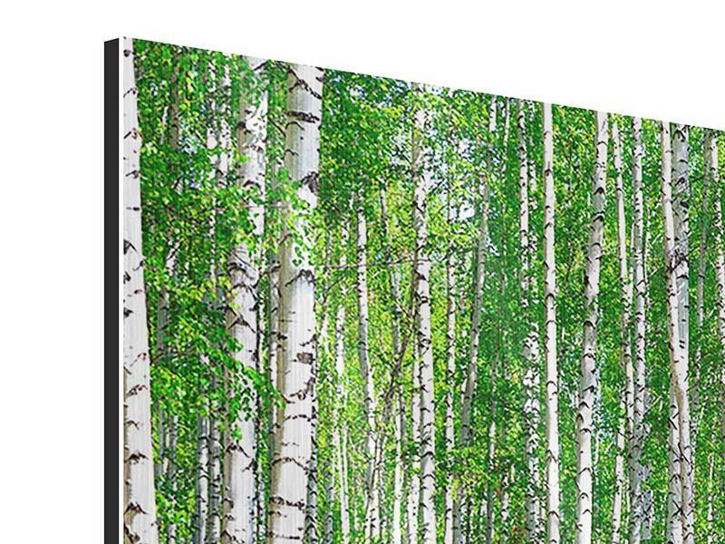Metallic-Bild Der Birkenwald im Sommer