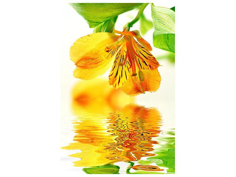 Metallic-Bild Fliessende Orchideenblüte