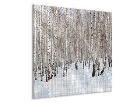 Metallic-Bild Birkenwald-Spuren im Schnee
