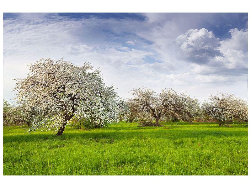 Metallic-Bild Apfelbaum-Garten