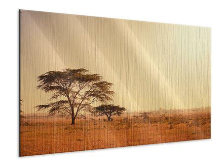 Metallic-Bild Weideland in Kenia