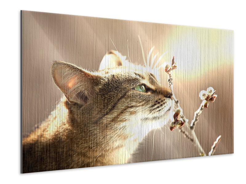 Metallic-Bild Die Katze