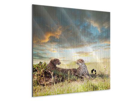 Metallic-Bild Geparden