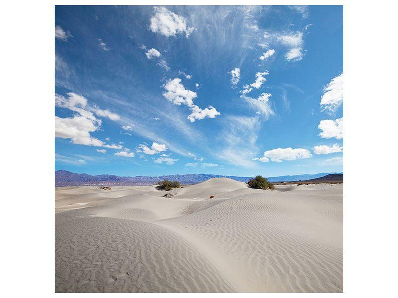 Metallic-Bild Wüstenlandschaft