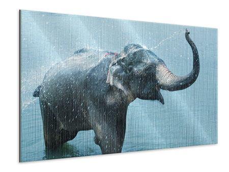 Metallic-Bild Der junge Elefant