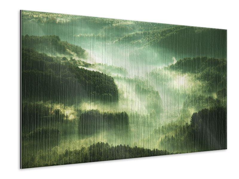 Metallic-Bild Über den Wäldern