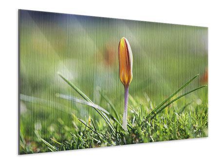 Metallic-Bild Die Blütenknospe