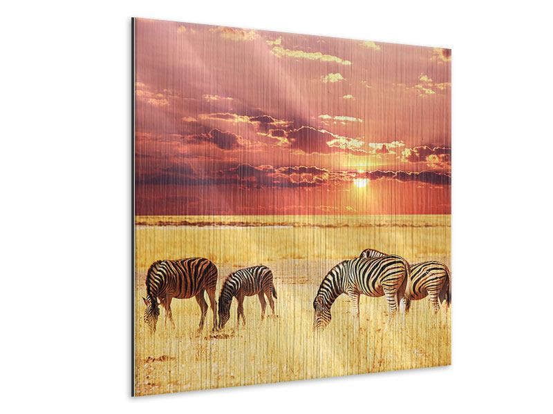 Metallic-Bild Zebras in der Savanne