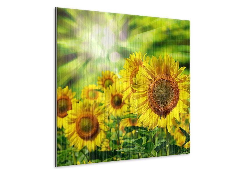 Metallic-Bild Die Sonne und die Blumen