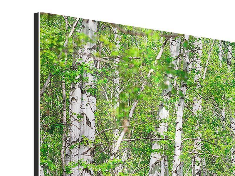 Metallic-Bild Der Birkenwald