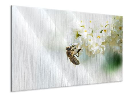 Metallic-Bild Die Hummel und die Blüte