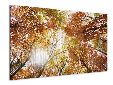 Metallic-Bild Herbstbäume