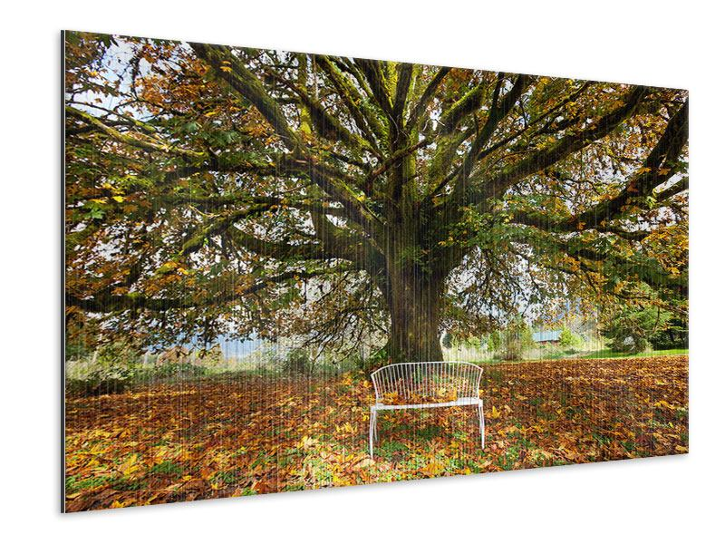 Metallic-Bild Mein Lieblingsbaum
