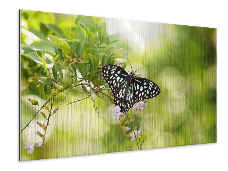 Metallic-Bild Papilio Schmetterling XXL