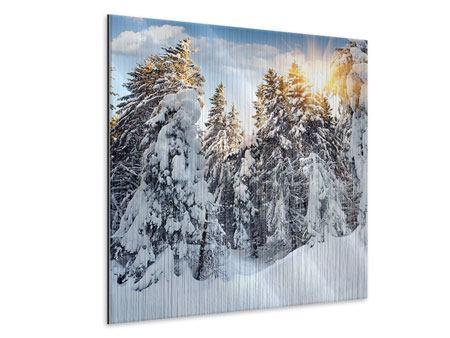 Metallic-Bild Tannen im Schnee