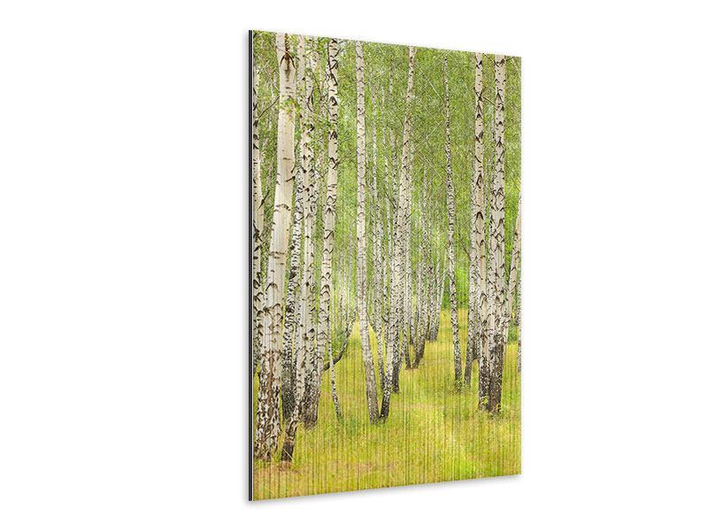 Metallic-Bild Der Birkenwald im Spätsommer