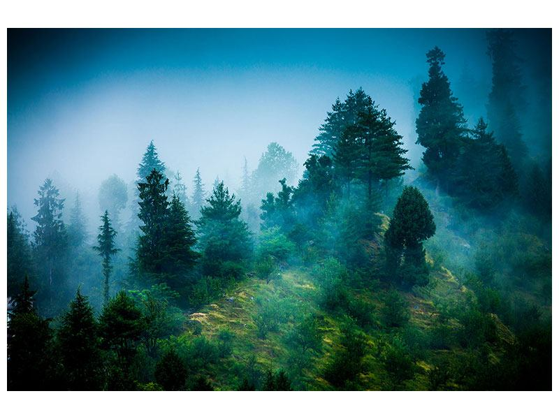 Metallic-Bild Geheimnisvoller Wald