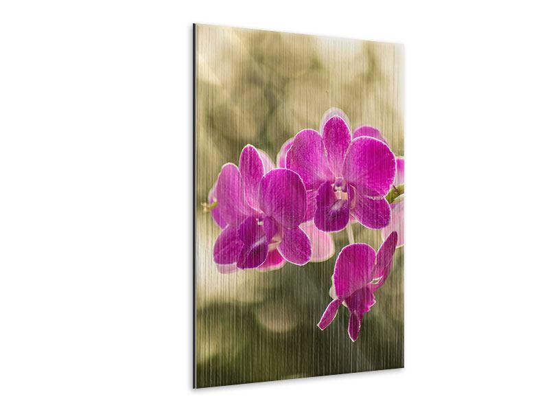 Metallic-Bild Orchideen Violett