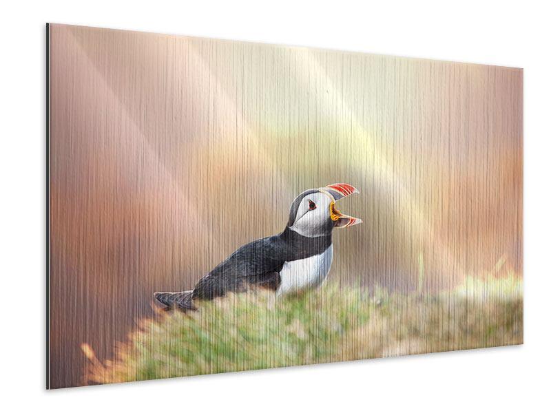 Metallic-Bild Der Papageitaucher