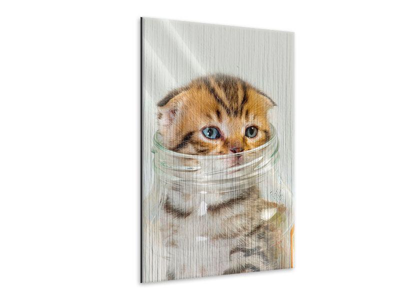 Metallic-Bild Faltohrkatzenbaby