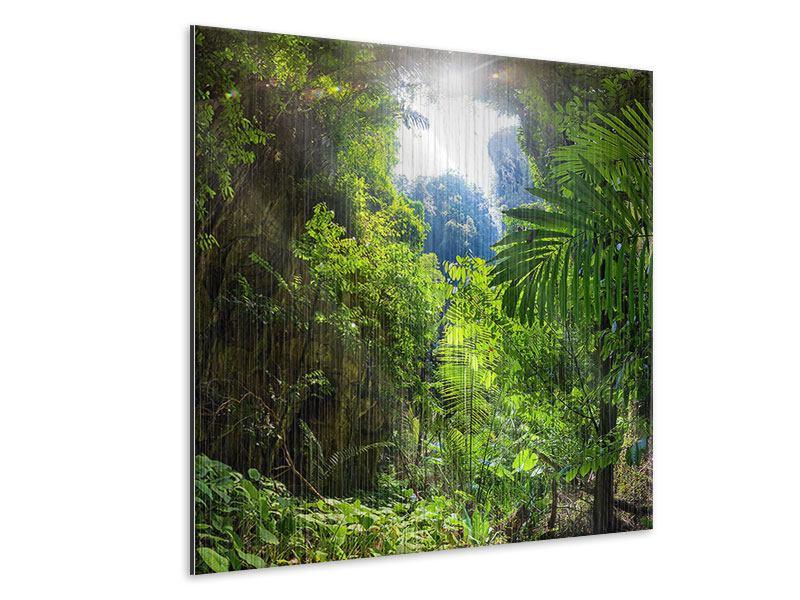 Metallic-Bild Lichtung im Dschungel
