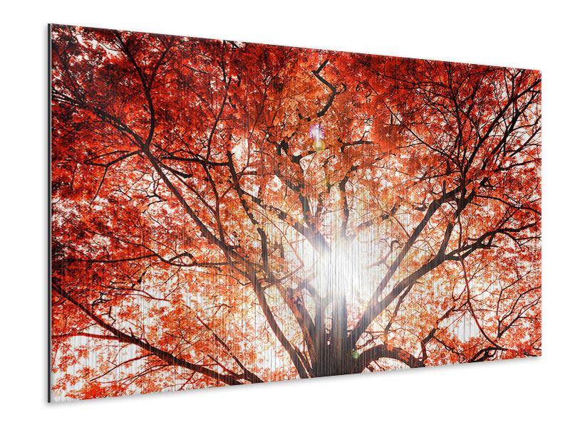Metallic-Bild Herbstlicht