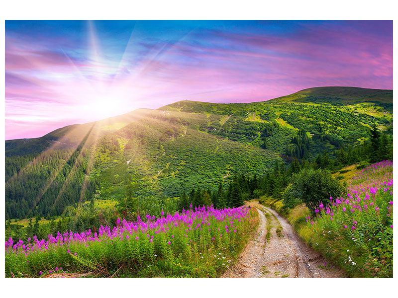 Metallic-Bild Eine Sommerlandschaft bei Sonnenaufgang