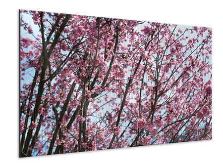 Metallic-Bild Japanische Blütenkirsche