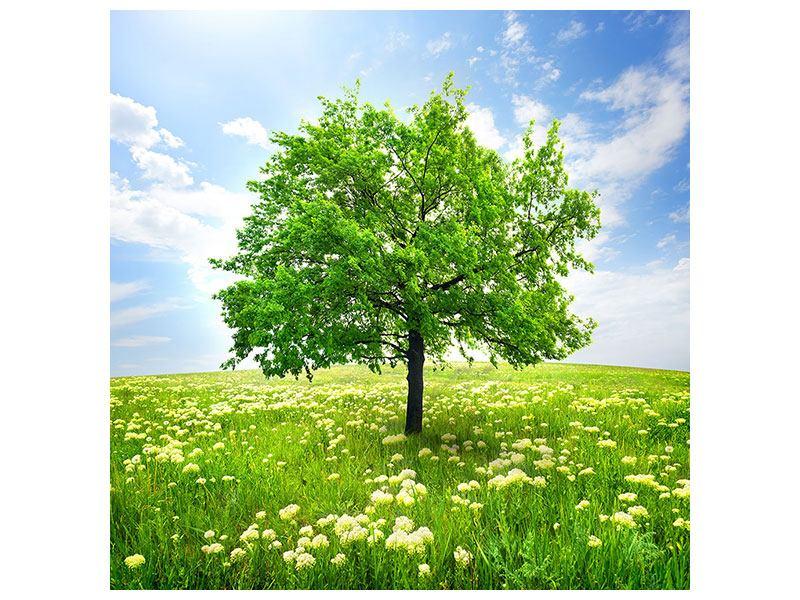 Metallic-Bild Der Baum